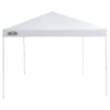 Lake & Trail 10' x 10' Straight Leg Instant Canopy (CL100C-Meijer)