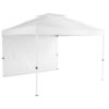 Everbilt 10' x 10' Commercial Instant Canopy (HPP100-THD)
